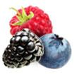 frutta freeskò
